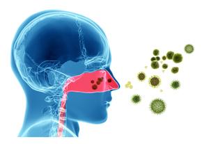 花粉症などのアレルギー症状に対するオステオパシー
